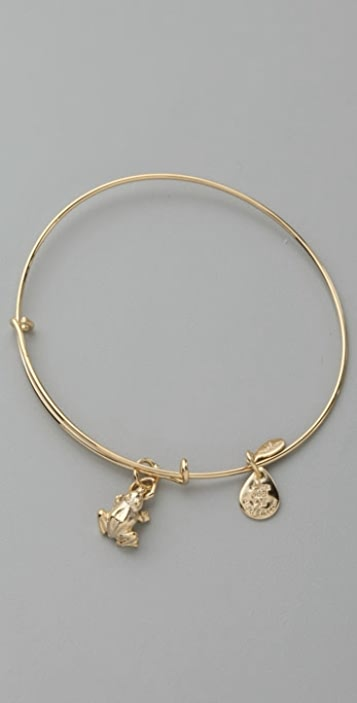 Alex and Ani Frog Expandable Bangle