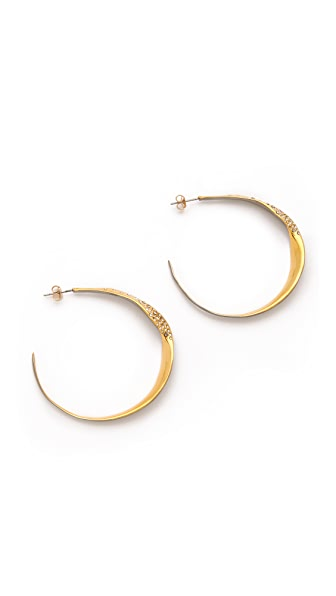 Alexis Bittar Bel Air Hoop Earrings