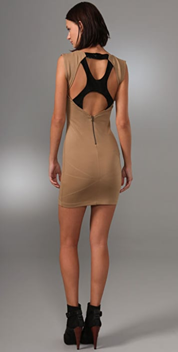 alice + olivia Grody Mesh Back Dress