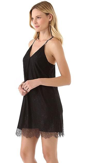 alice + olivia Lace Fierra Dress