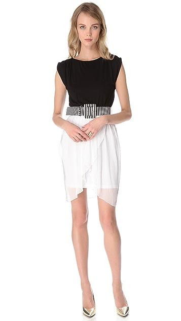alice + olivia Autumn Tulip Skirt Dress