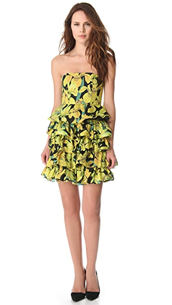 alice + olivia Strapless Tiered Bustier Dress