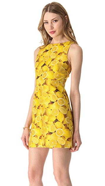 alice + olivia Candice A Line Dress