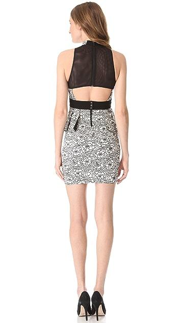 alice + olivia Lace Peplum Halter Dress