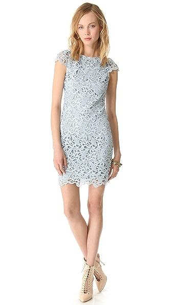 alice + olivia Lace Cap Sleeve Dress