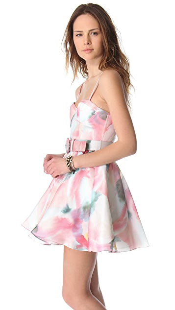 alice + olivia Sweetheart Bustier Flare Dress