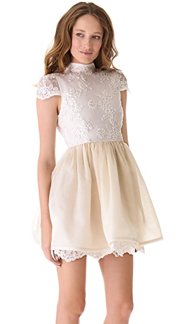 alice + olivia Lace Bodice Party Dress
