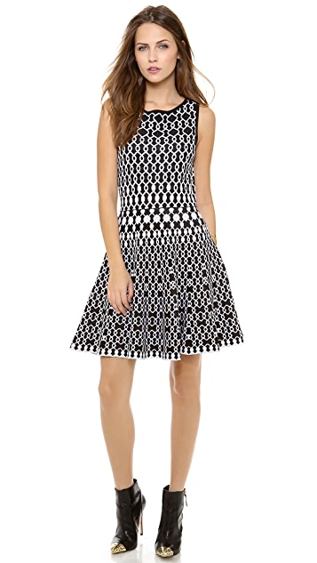 alice + olivia Jasiey Sleeveless Full Skirt Dress
