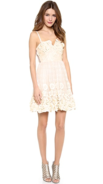 alice + olivia Devorah Spaghetti Strap Bustier Mini Dress