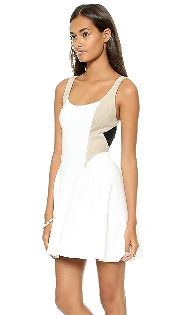 alice + olivia Clifton Sleeveless Flare Dress