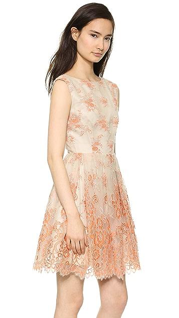 alice + olivia Fila Dress