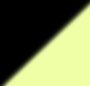 Black/Neon