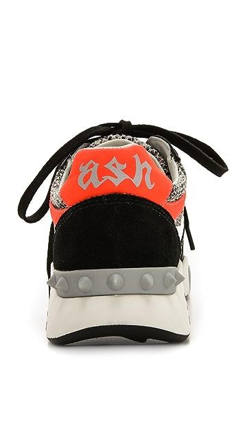 Ash Hendrix Sneakers