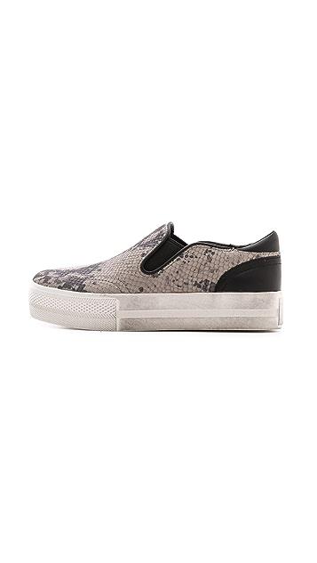 Ash Jungle Printed Slip On Sneakers