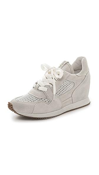 Ash Dean Mesh Sneakers