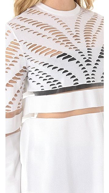 Alexander Wang Engineered Zebra Pullover