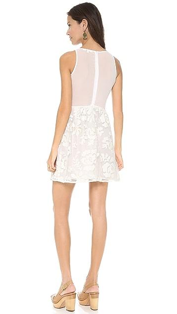 BB Dakota Sibley Mini Dress