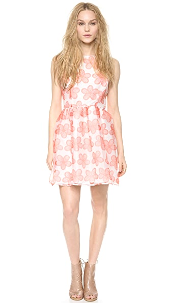BB Dakota Shirley Mini Dress