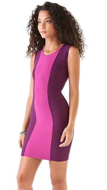 BCBGMAXAZRIA Aliza Color Block Dress