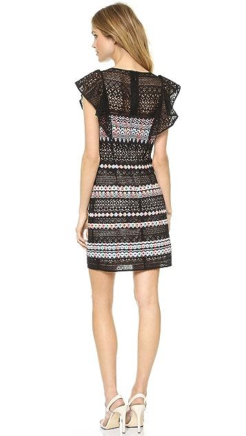 BCBGMAXAZRIA Roxine Ruffle Sleeve Embroidered Dress