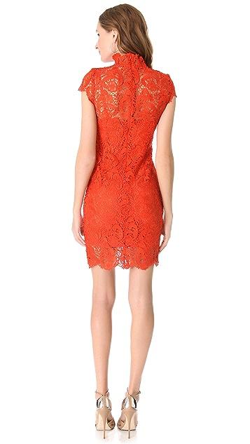 Blaque Label Lace Short Sleeve Dress