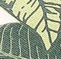 Beige/Green