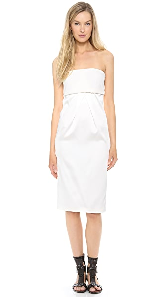 Calvin Klein Collection Uva Strapless Dress