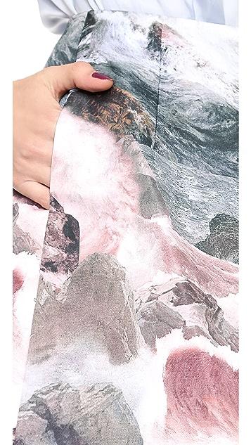 Carven Printed Sateen Skirt