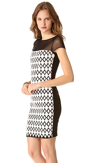 Catherine Malandrino Cutout Dress with Mesh Trim