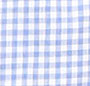 Baby Blue Gingham