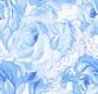 Porcelain Rose Print