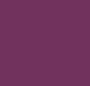Winter Violet