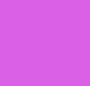 Wild Iris W/Pumice Stone Lace