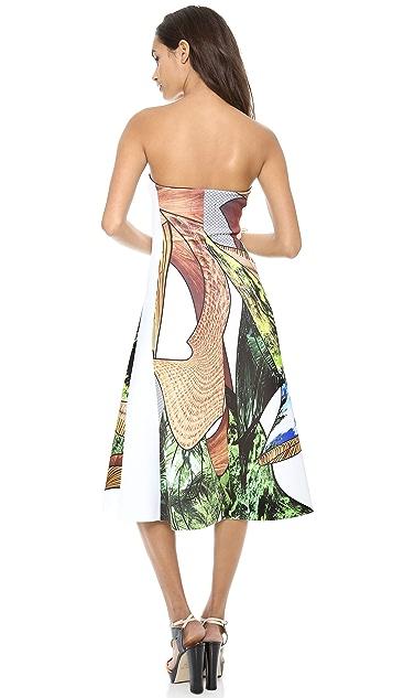 Clover Canyon Cuban Amazon Strapless Dress