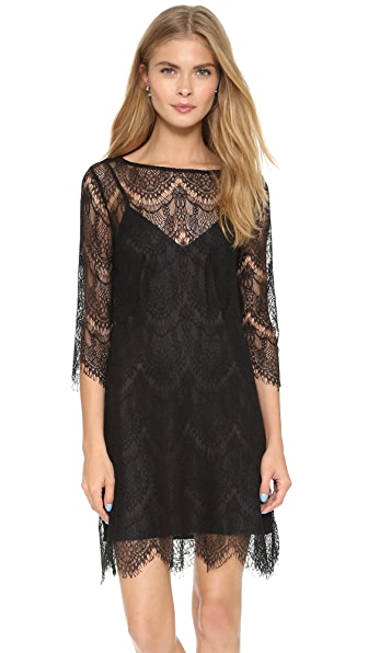 Cupcakes And Cashmere Marin Lace Dress - Black