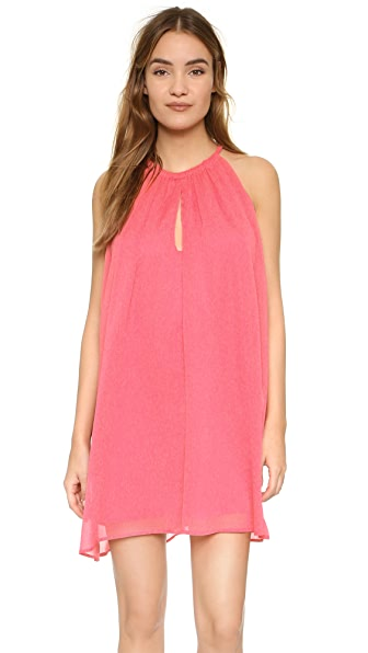 Cupcakes And Cashmere Sonoma Trapeze Dress - Flamingo