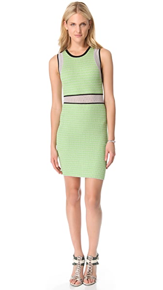 Cut25 by Yigal Azrouel Mesh Techno Knit Dress