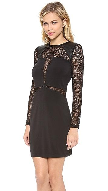 Cut25 by Yigal Azrouel Lace Combo Jersey Dress
