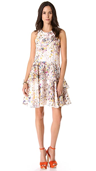 Cynthia Rowley Confetti Overlay Dress
