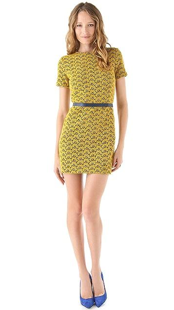 Diane von Furstenberg Cindy Acorn Lace Dress
