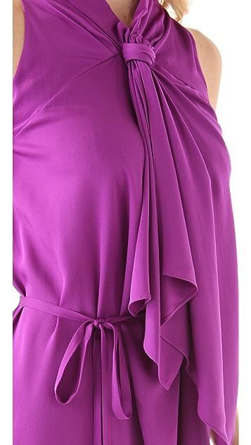 Diane von Furstenberg Morana Tie Dress