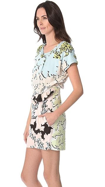 Diane von Furstenberg Edlyn Print Dress