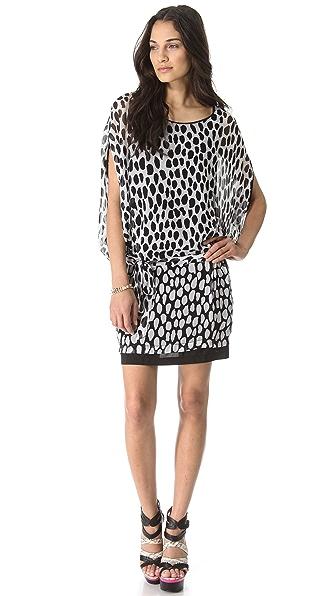 Diane von Furstenberg Robyn Printed Dress