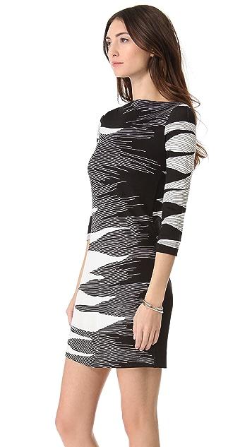 Diane von Furstenberg Ruri Dress