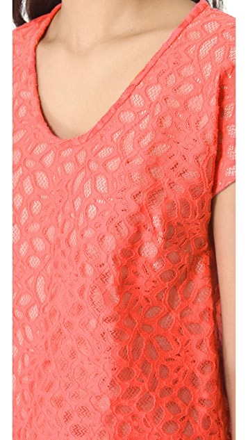 Diane von Furstenberg Acedia Shadow Dot Lace Top