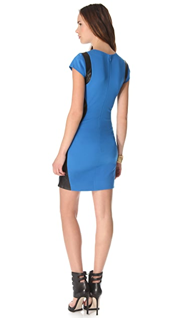 Diane von Furstenberg Pele Leather Combo Dress