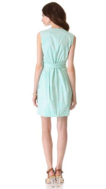 Diane von Furstenberg Carol Dress