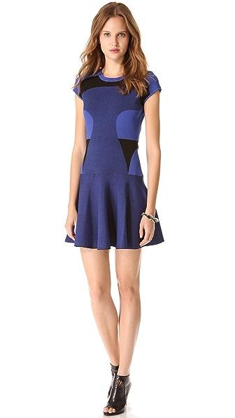 Diane von Furstenberg Renee Dress