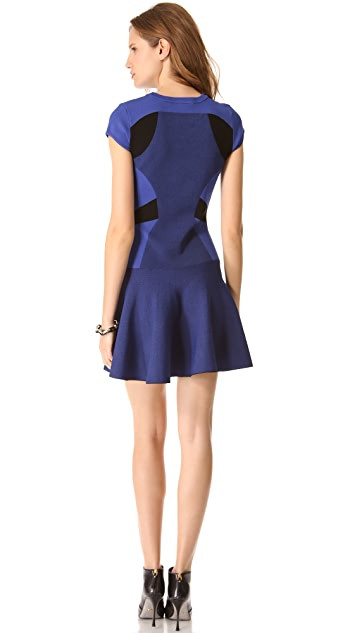 Diane von Furstenberg Renee Dress