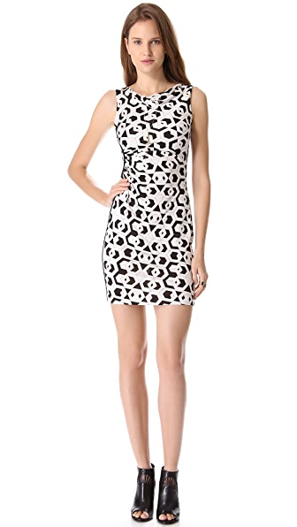 Diane von Furstenberg Glasmery Dress